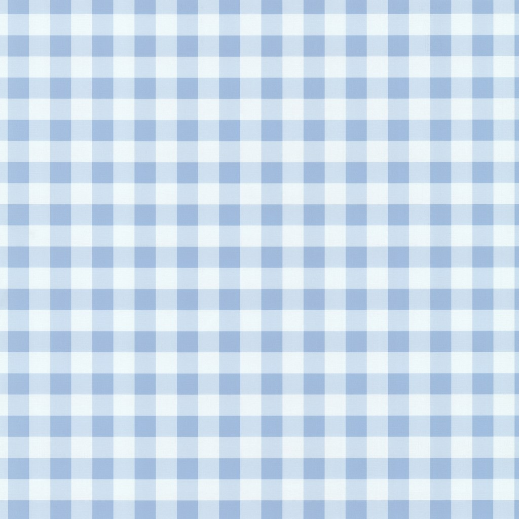 Playground Sky Blue White Gingham Check Wallpaper by PS 1024x1024