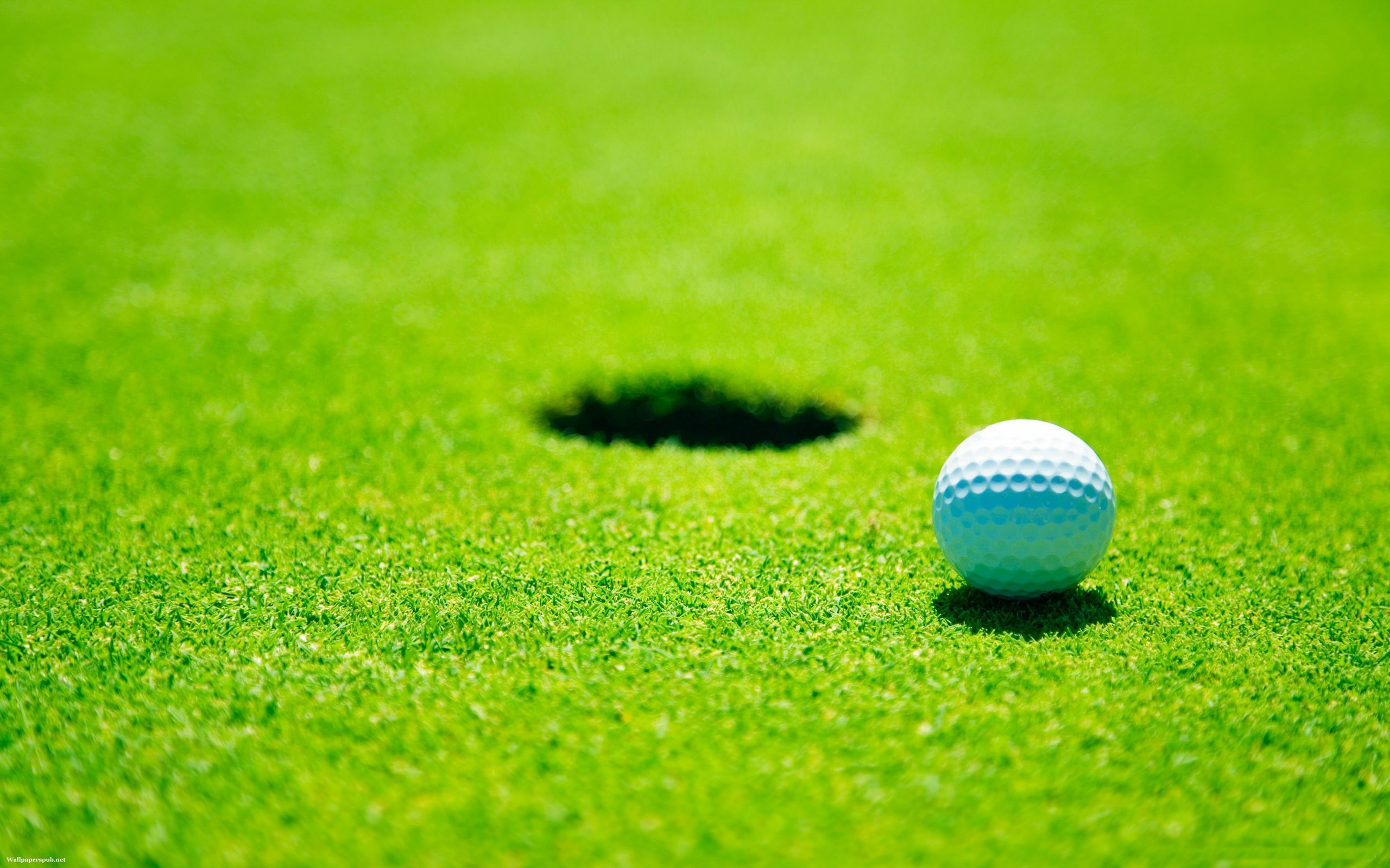 Golf Ball   Wallpaper 69 2560x1600