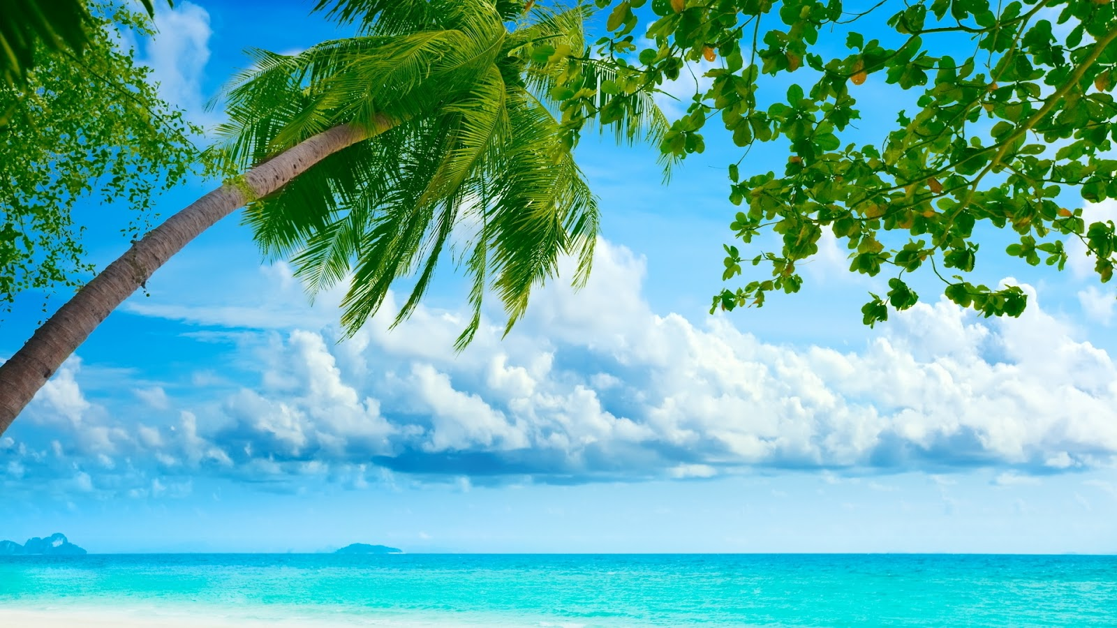 My Best Wallpapers Exotic Summer Picture 1600x900