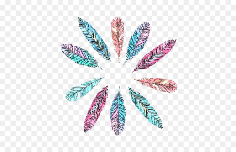 Leaf Drawing png download   500570   Transparent Feather png 900x580