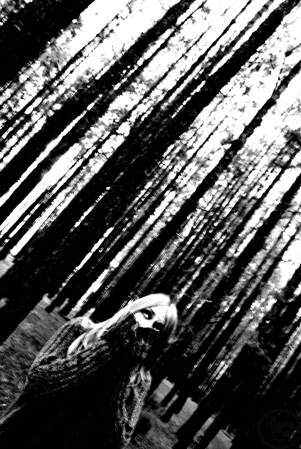 Screaming Shadows by Danny Vain 1280x1912