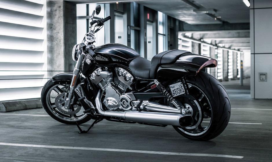 Free Download Harley Davidson V Rod Muscle Showing Harley