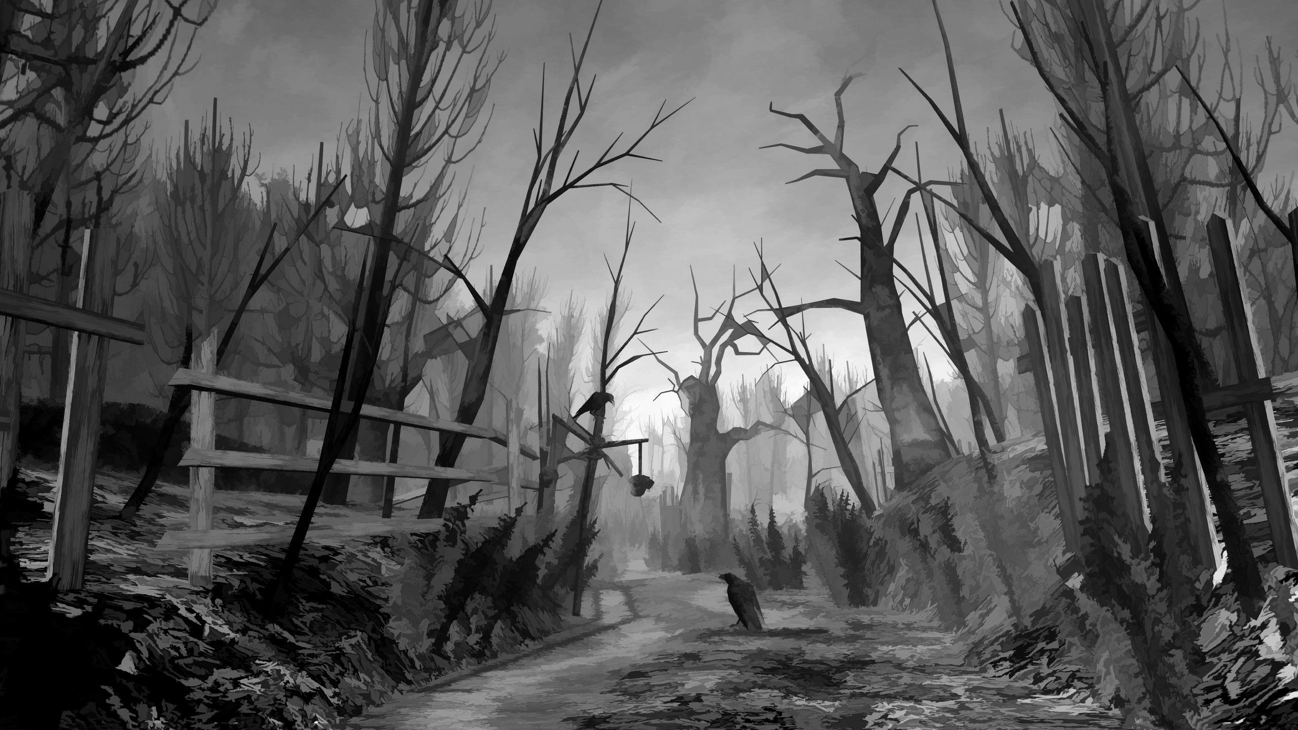 Creepy forest wallpaper 17491 2560x1440