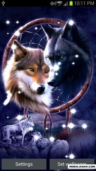 Dream Catcher Wolves Live Wallpaper Android App download 320x568