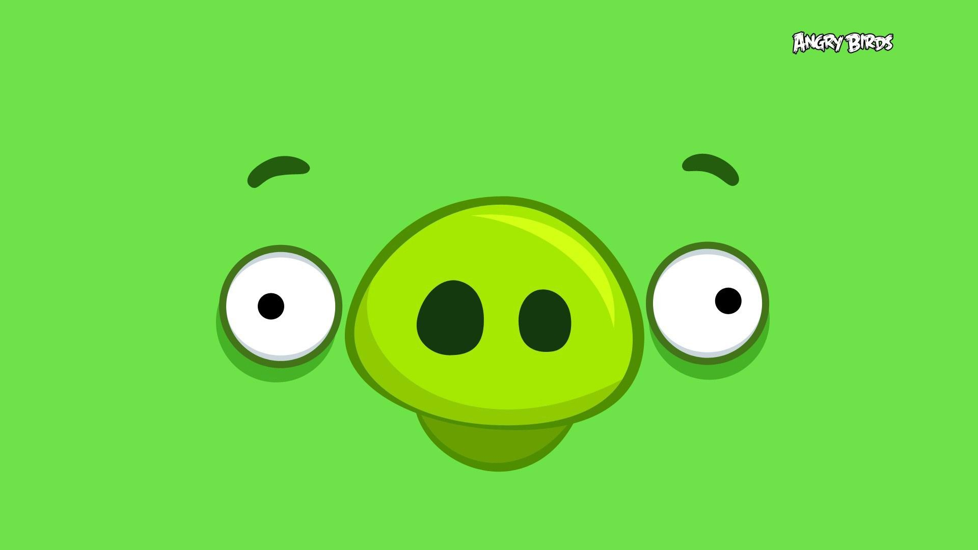 Angry Birds Wallpaper Hd wallpaper   1137793 1920x1080