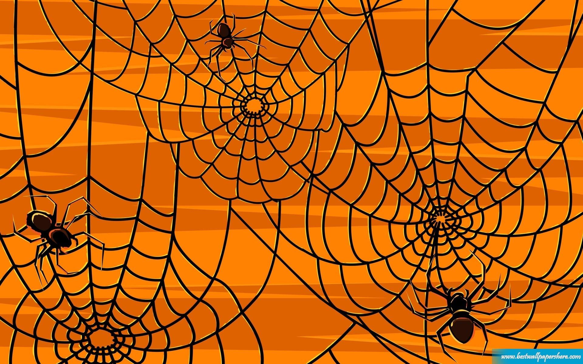 Halloween Spider wallpaper   312269 1920x1200