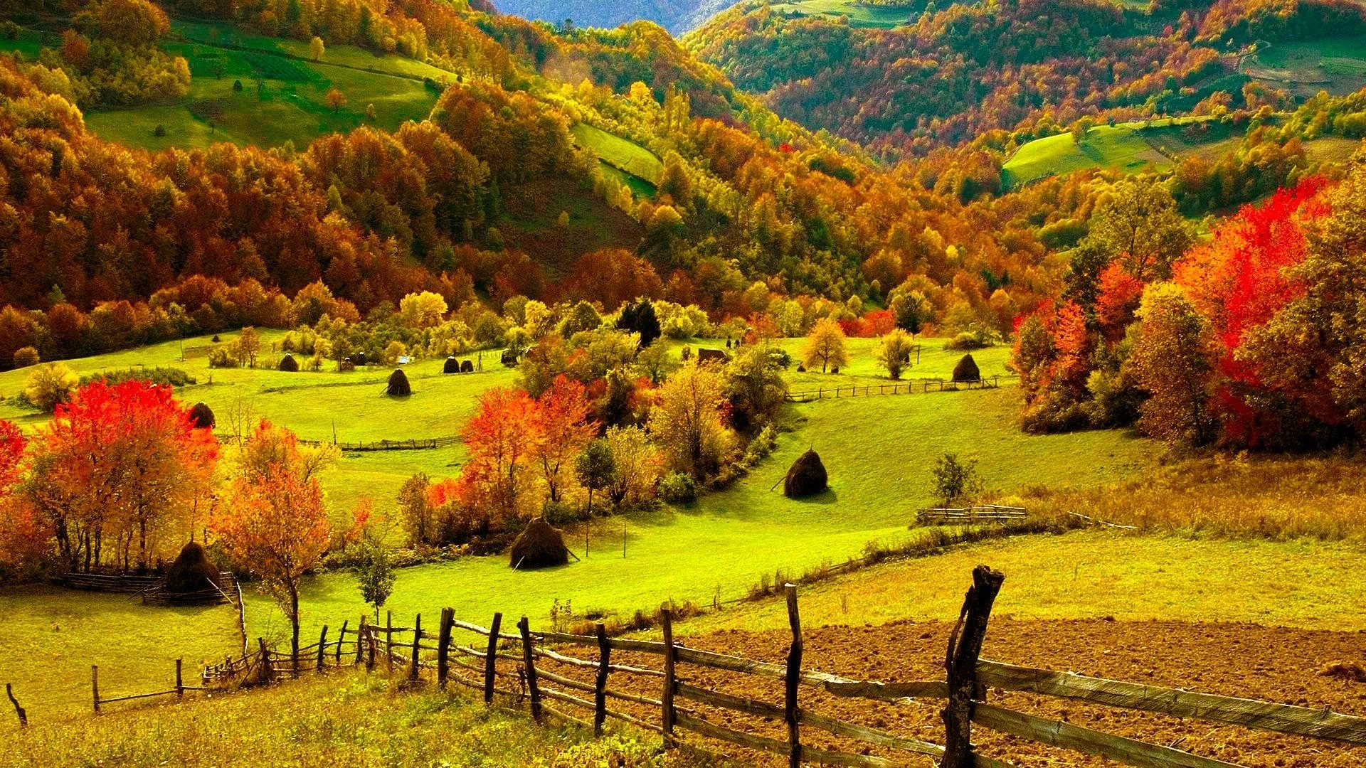 color scenic view bright wallpaper 1920x1080 26225 WallpaperUP 1920x1080