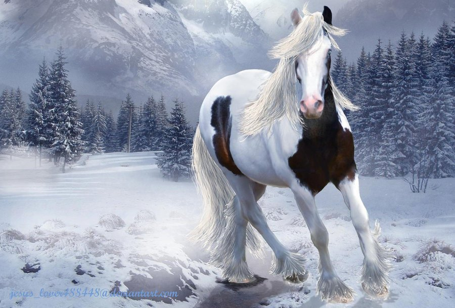 Free Download Gypsy Winter Wallpaper By Jesuslover488448