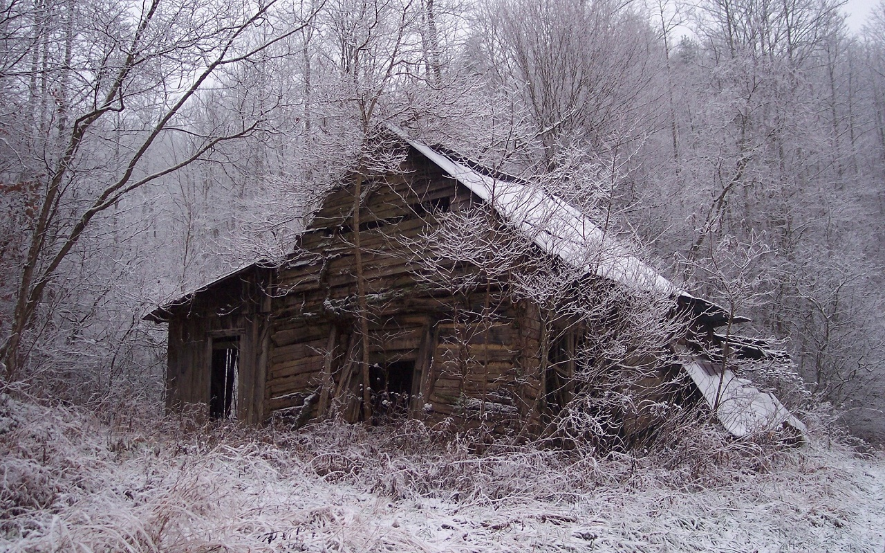 Old Cabin in Woods in Spring Wallpaper 1280x799