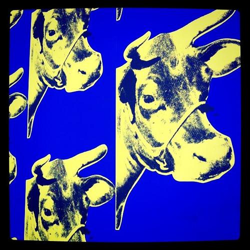 Andy Warhol cow wallpaper Flickr   Photo Sharing 500x500