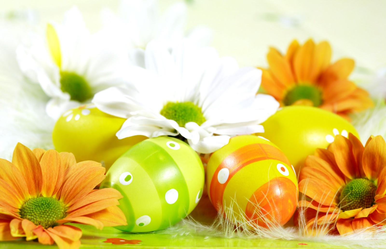 Easter Desktop Background Cute Wallpapers 1600x1033