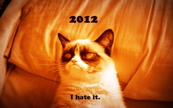 hategrumpy cat cats zombies hate grumpy cat Cats Wallpapers 600x375