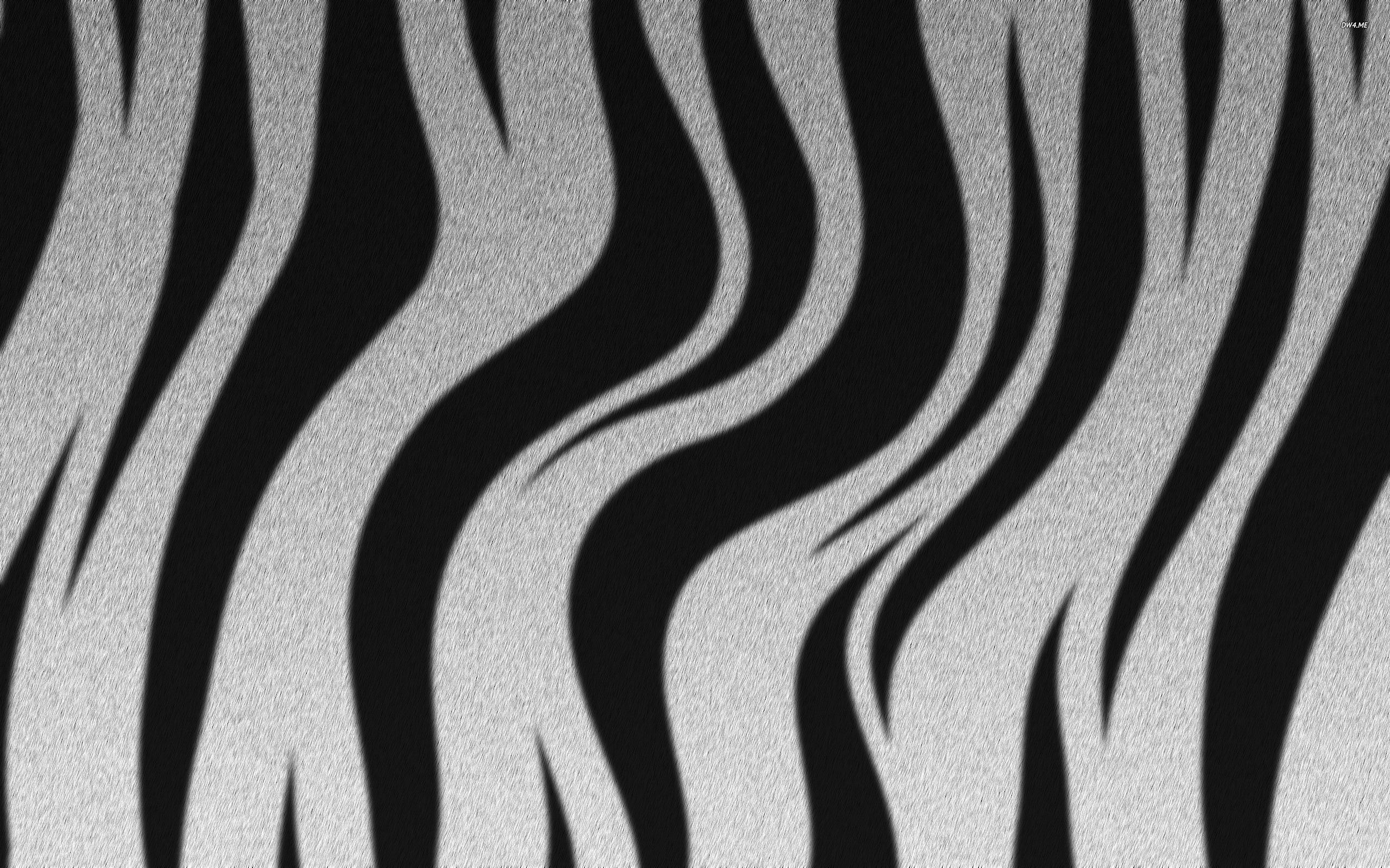 Zebra stripes wallpaper   Digital Art wallpapers   752 2560x1600
