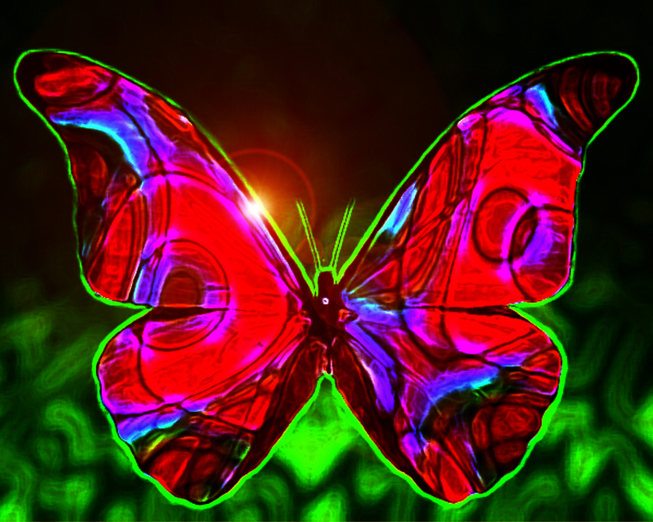 Website Wallpaper Butterfly Wallpaper 1280x1024
