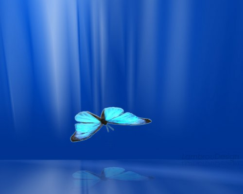 free wallpapers freecom3D Butterfly wallpaper 500x400