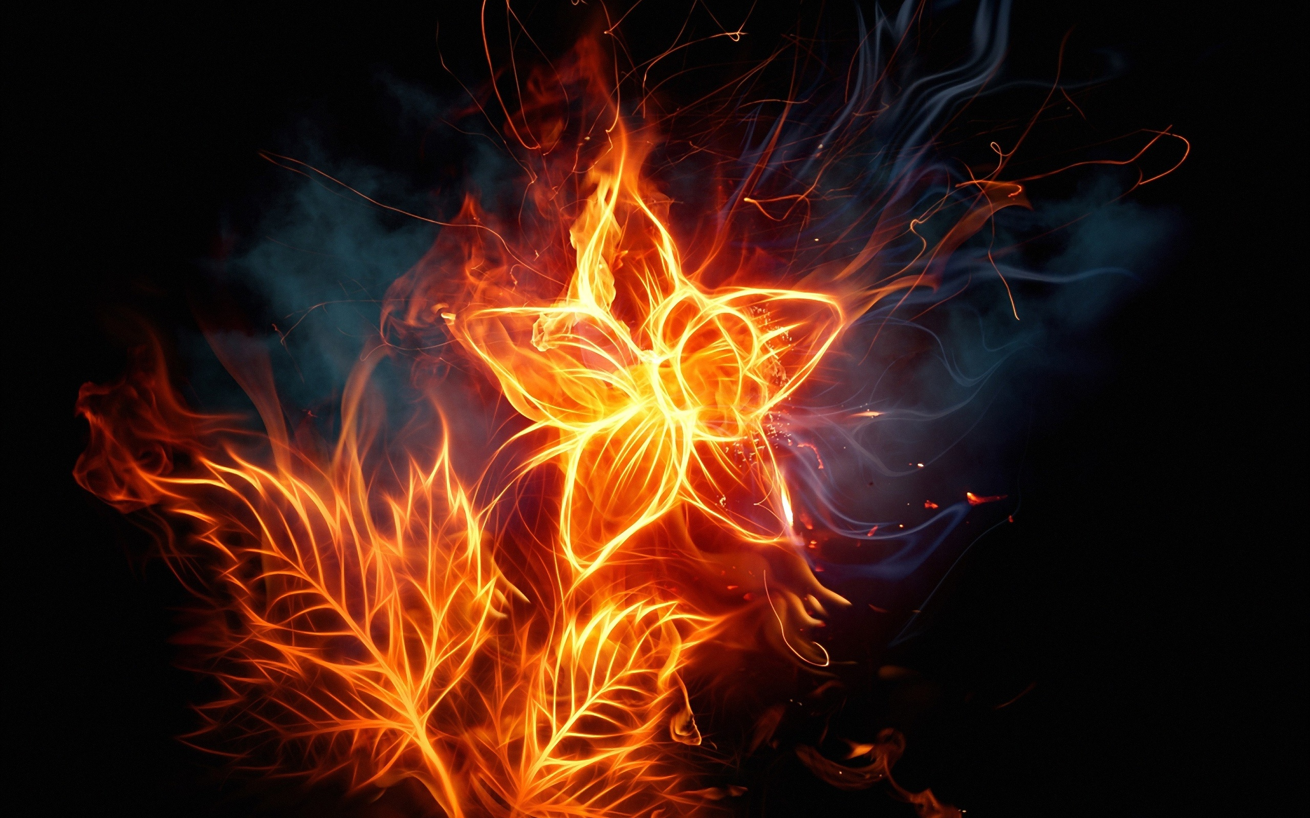leaves on fire wallpapers55com   Best Wallpapers for PCs Laptops 2560x1600