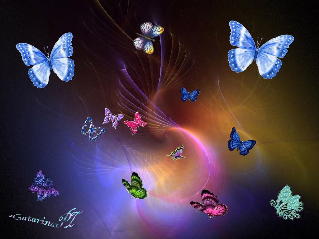 Fairies and Butterflies Background Colourful Butterflies 1024x768