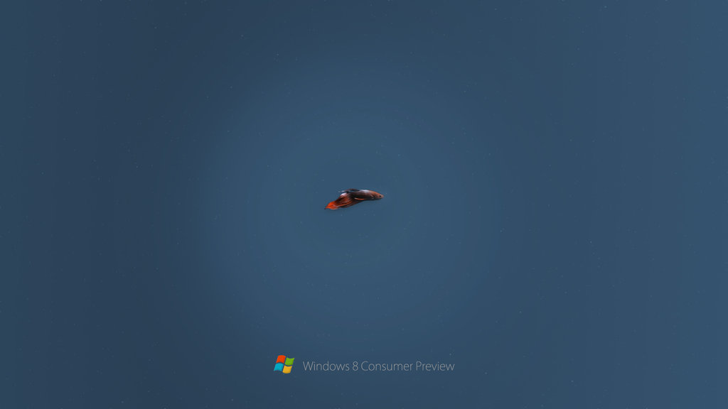 Windows 8 Consumer Preview Beta Fish by rehsup 1024x576