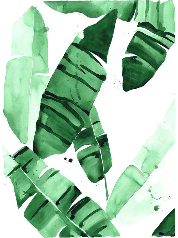 beverly 4 banana leaf tropical watercolor print green leaves the 600x800