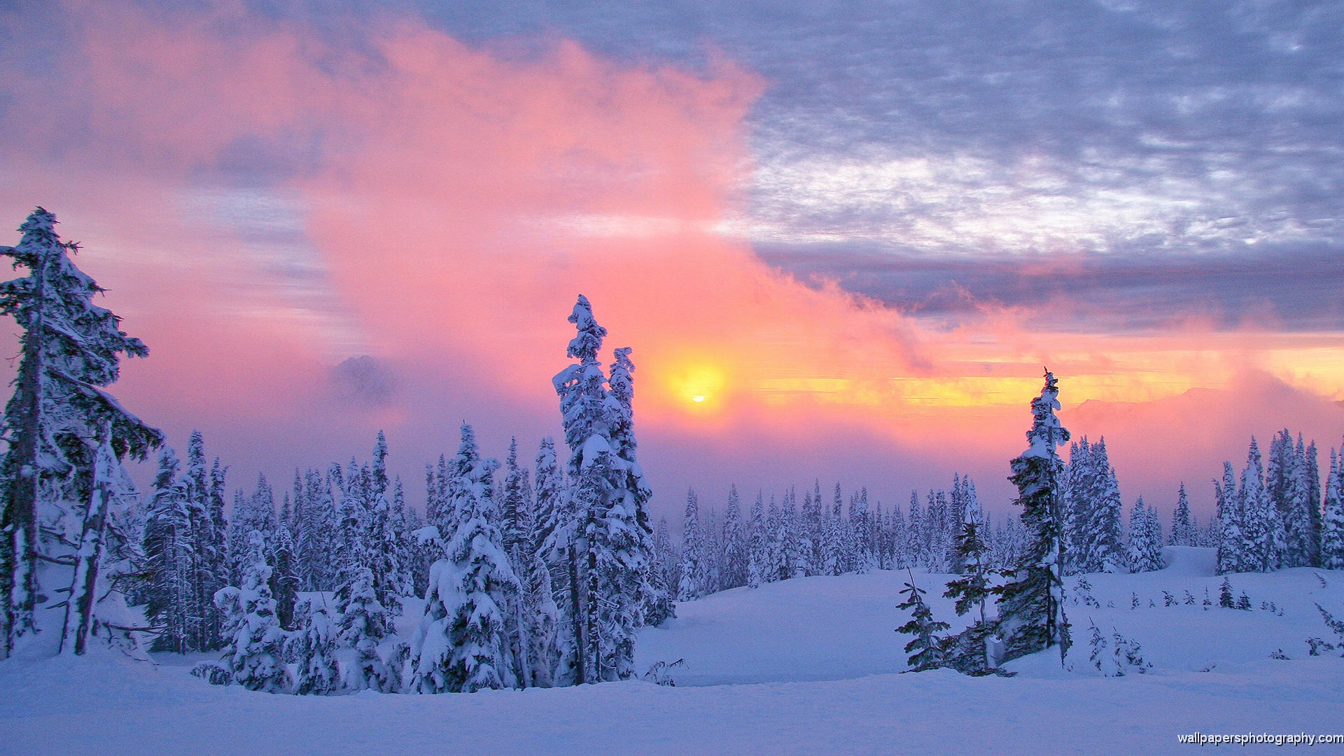 Winter Scenes Free Wallpaper For Iphone - HD Nature ...