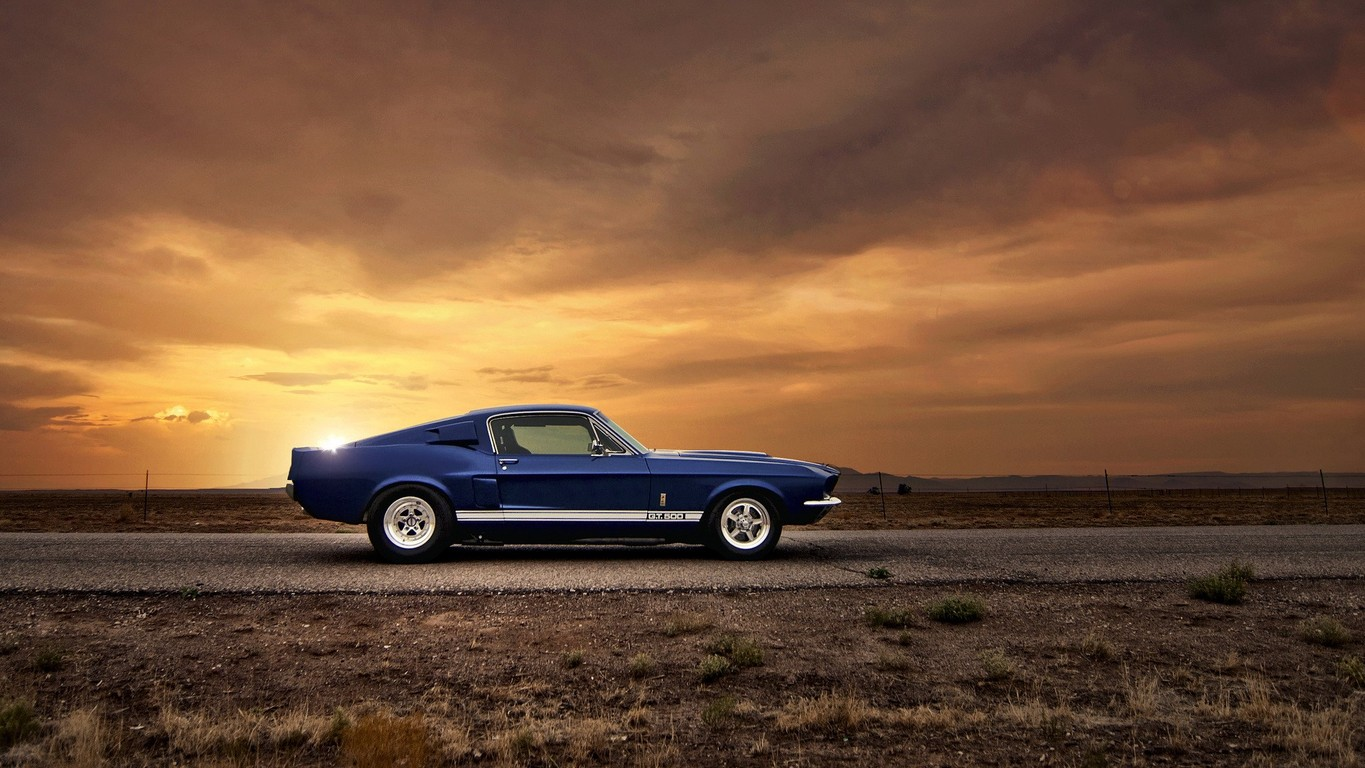 Ford Mustang Shelby GT500 wallpaper 15297 1365x768