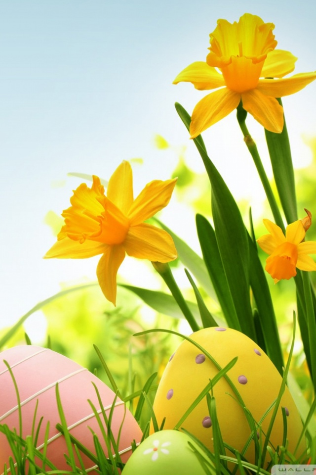 Happy Easter Mobile Wallpaper   Mobiles Wall 640x960