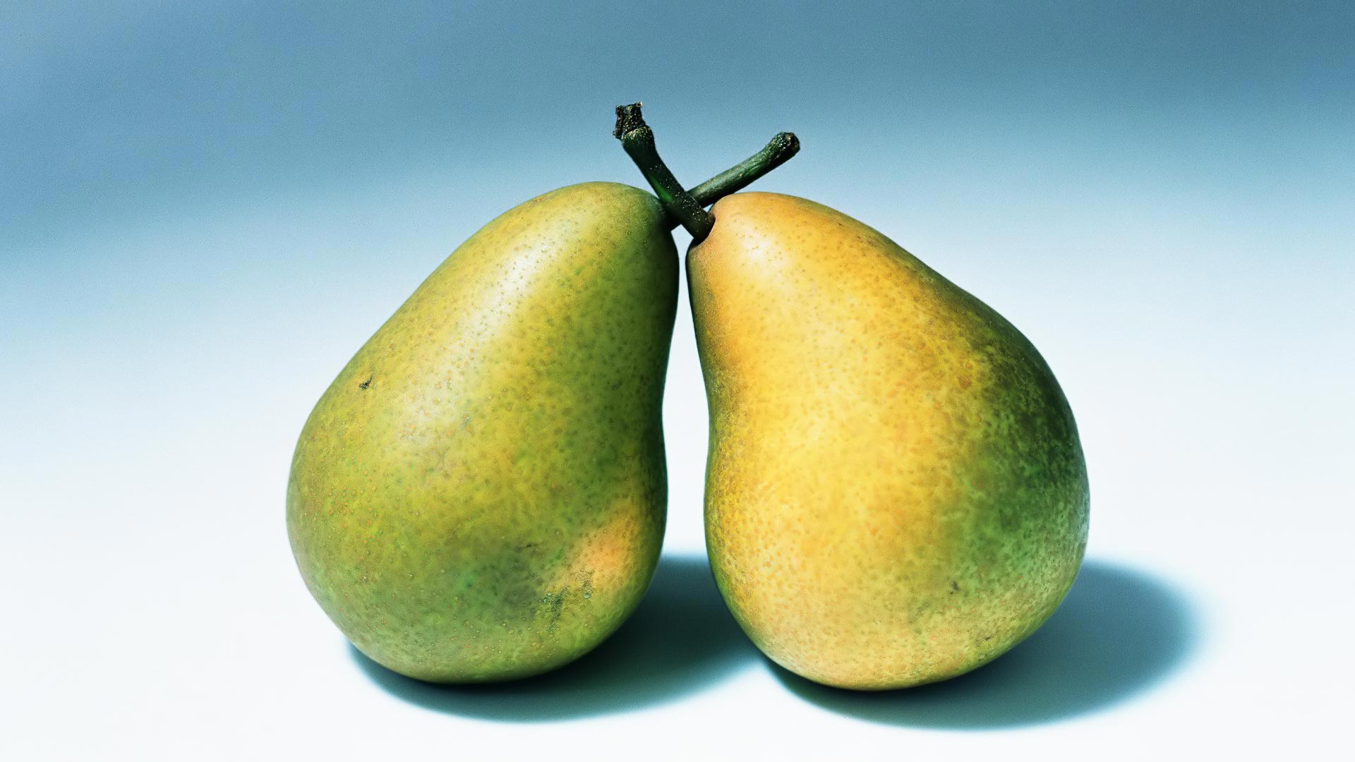 Pears fruit widescreen hd wallpaper   Background Wallpapers for your 1920x1080