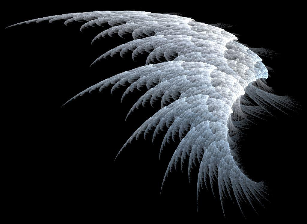 White Angel Wings Wallpapers Pictures Photos and Backgrounds 1024x748