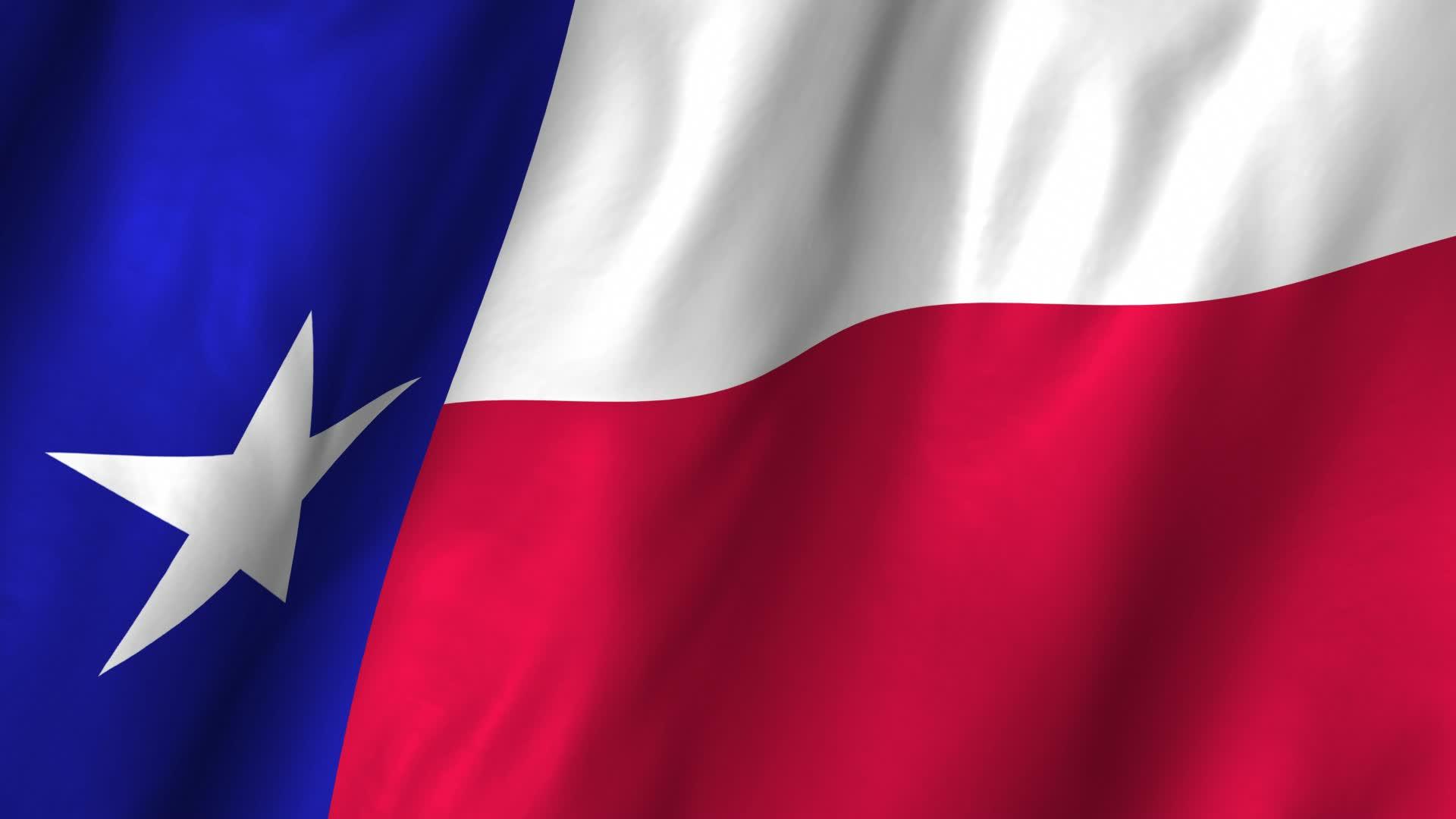 Flag Texas : Katinabags.com