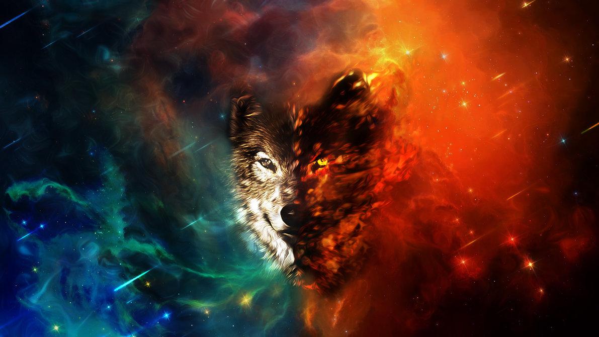 Wolf Wallpaper Hd Widescreen
