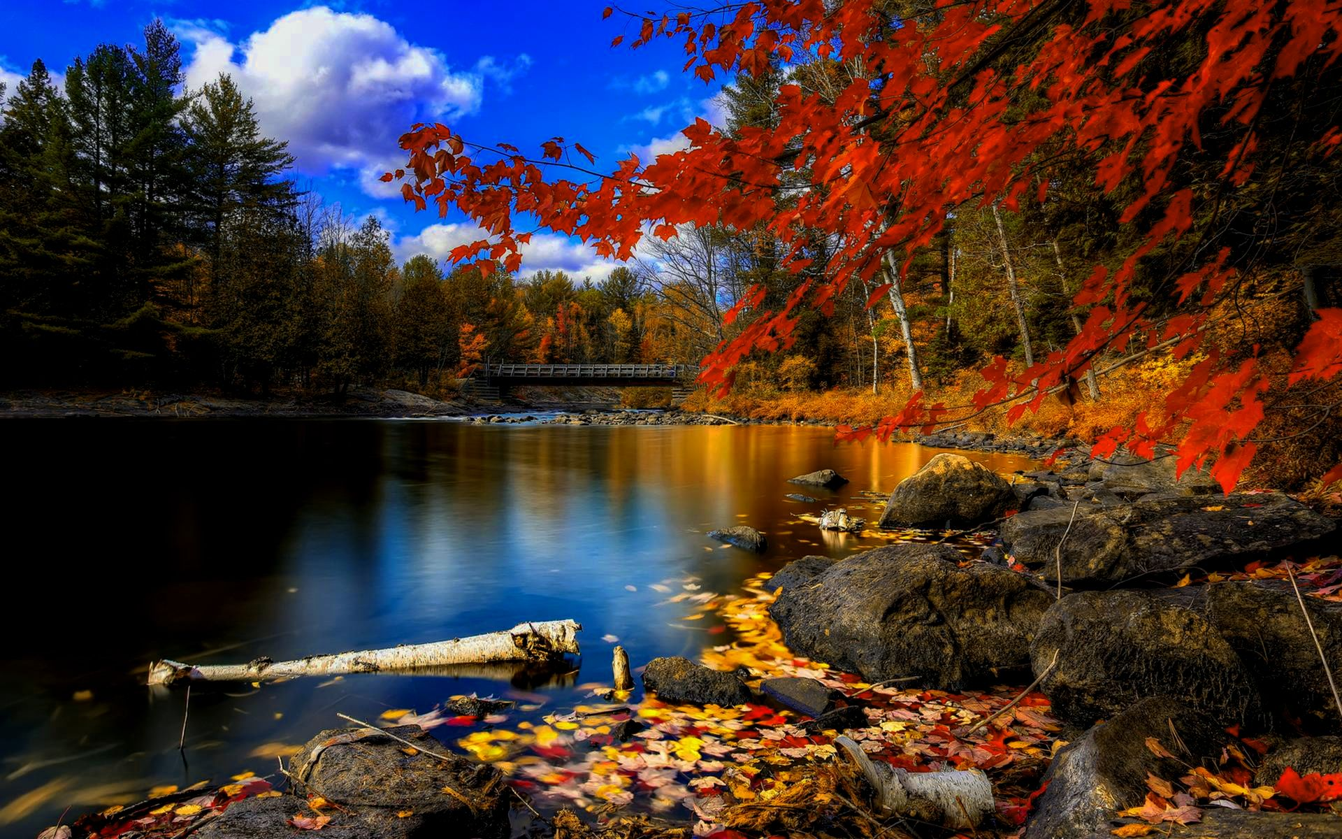 wallpaper autumn creative - photo #19