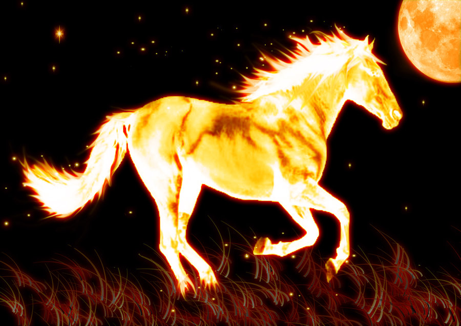 Fire Horse By Kirby6123 900x636