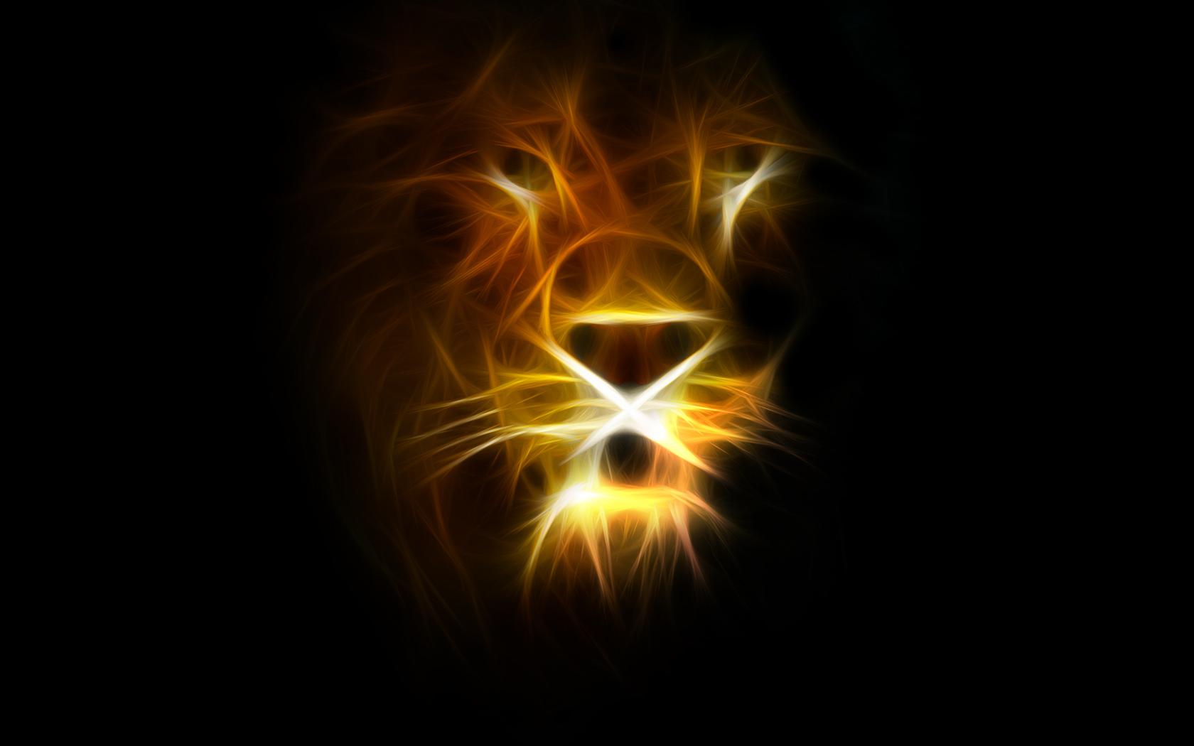 aslan resmi desktop wallpaper hd aslan hd desktop hd resim hd resimler 1680x1050