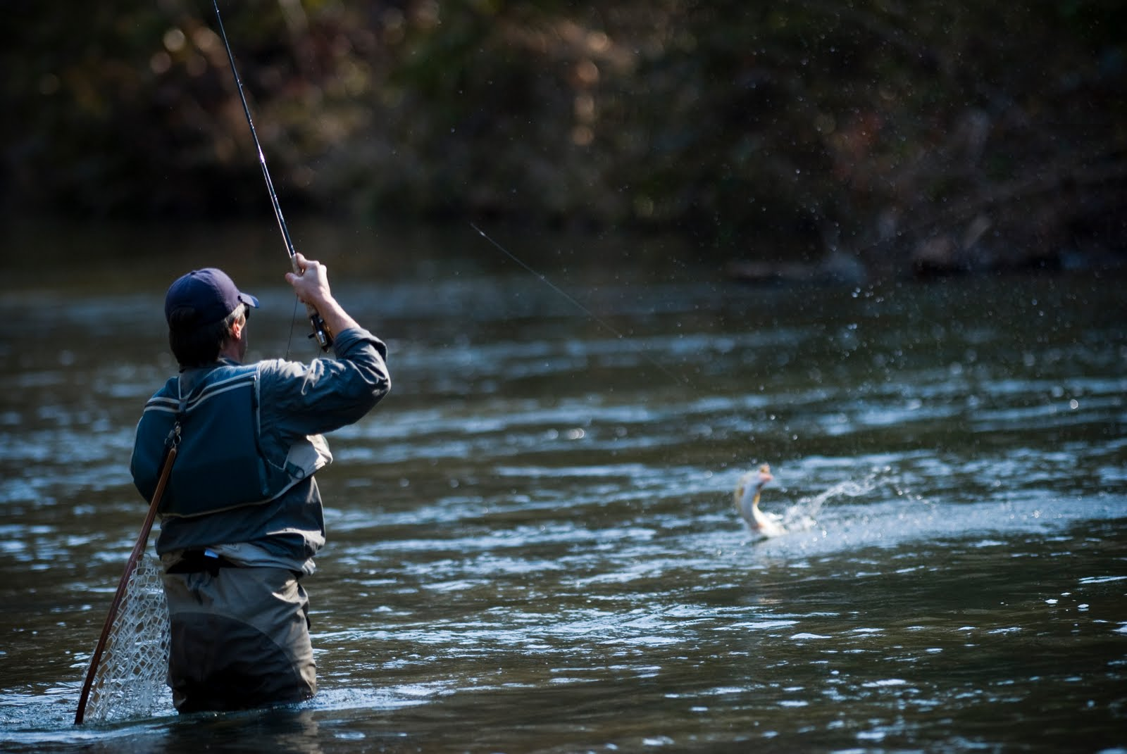 Fly Fishing Wallpapers 2017   2018 Best Cars Reviews 1600x1071