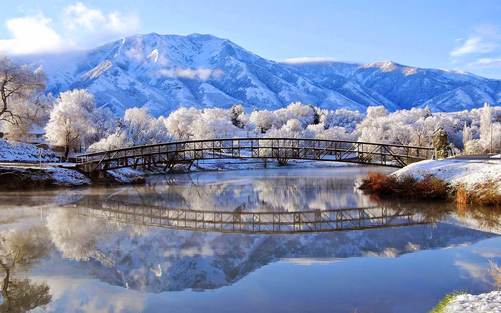 Beautiful Winter Scenery Wallpaper   Wallpapers And Pictures 1600x1000