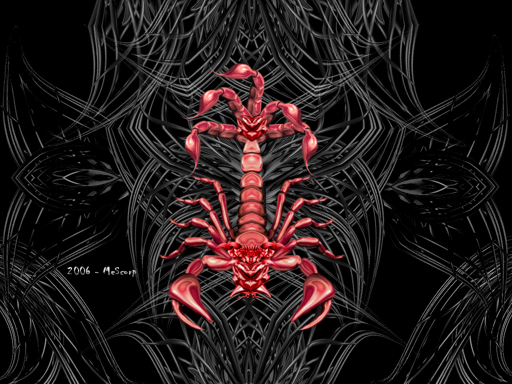 Red scorpion wallpaper - photo#32