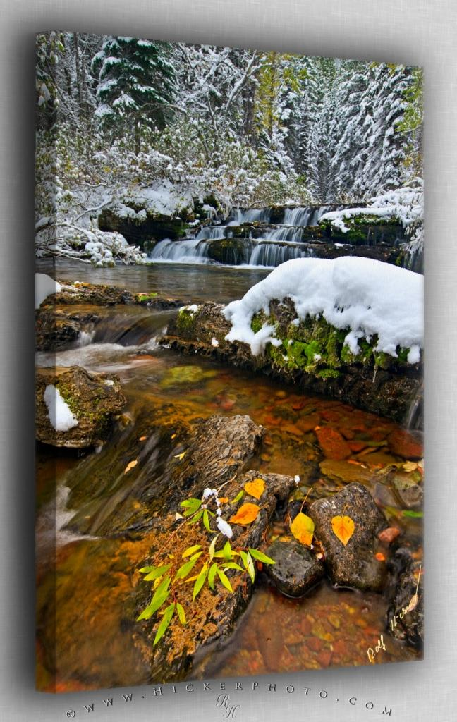 stream after an early winter snowfall in Waterton Lakes National Park 648x1024
