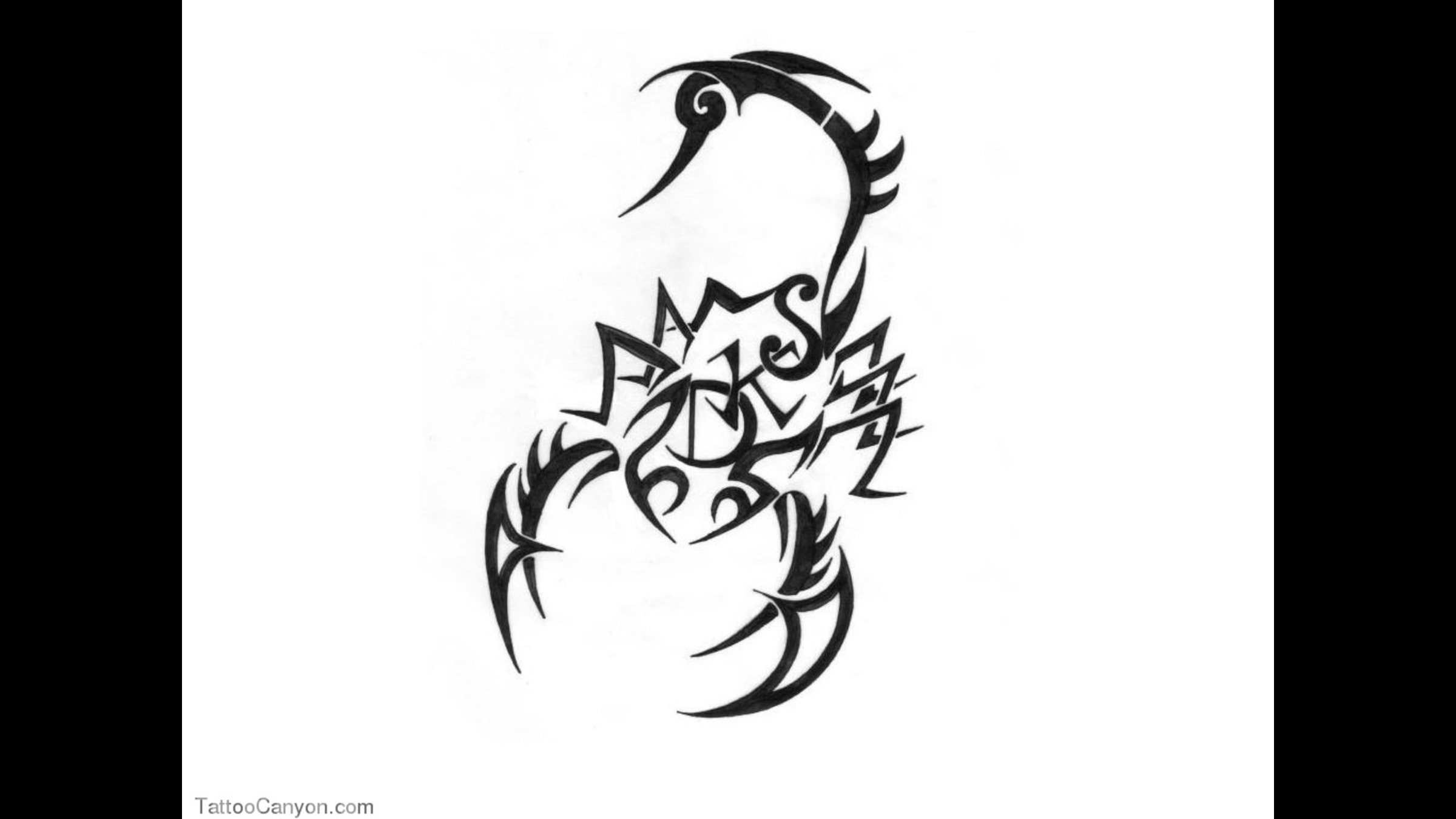 tribal scorpion wallpaper