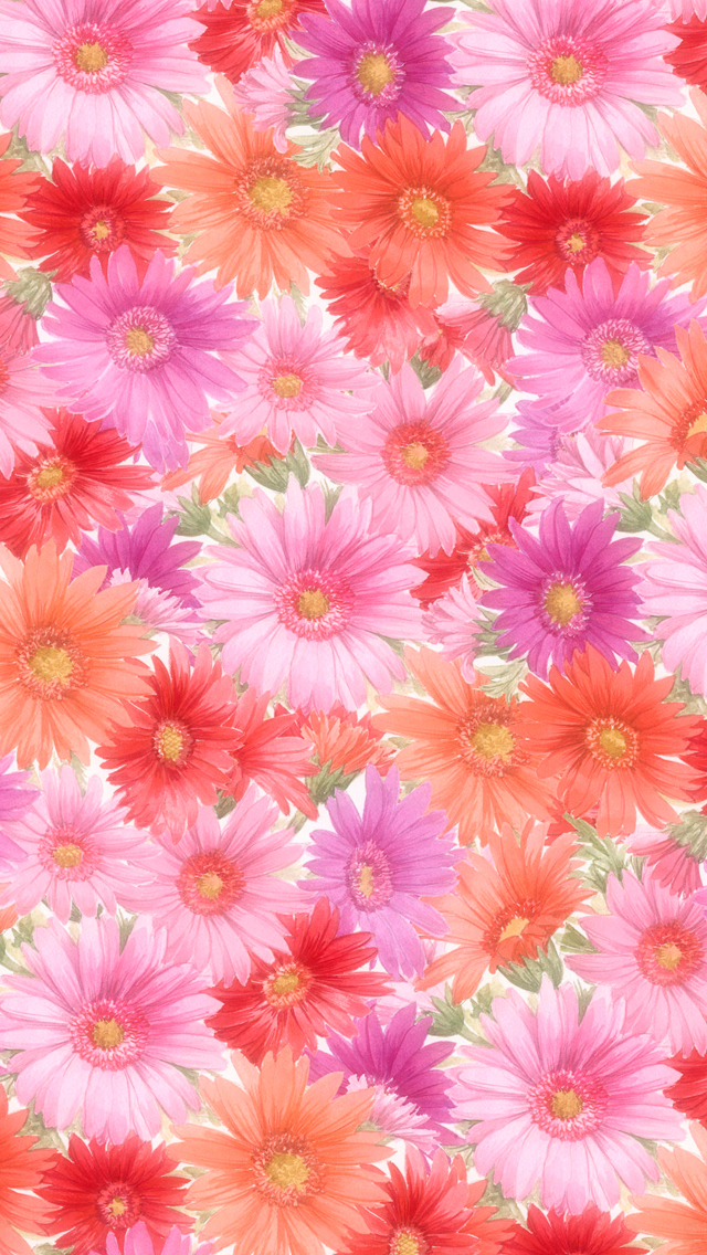 beatiful flower wallpaper backgrounds hd wallpaper flower garden most 640x1136