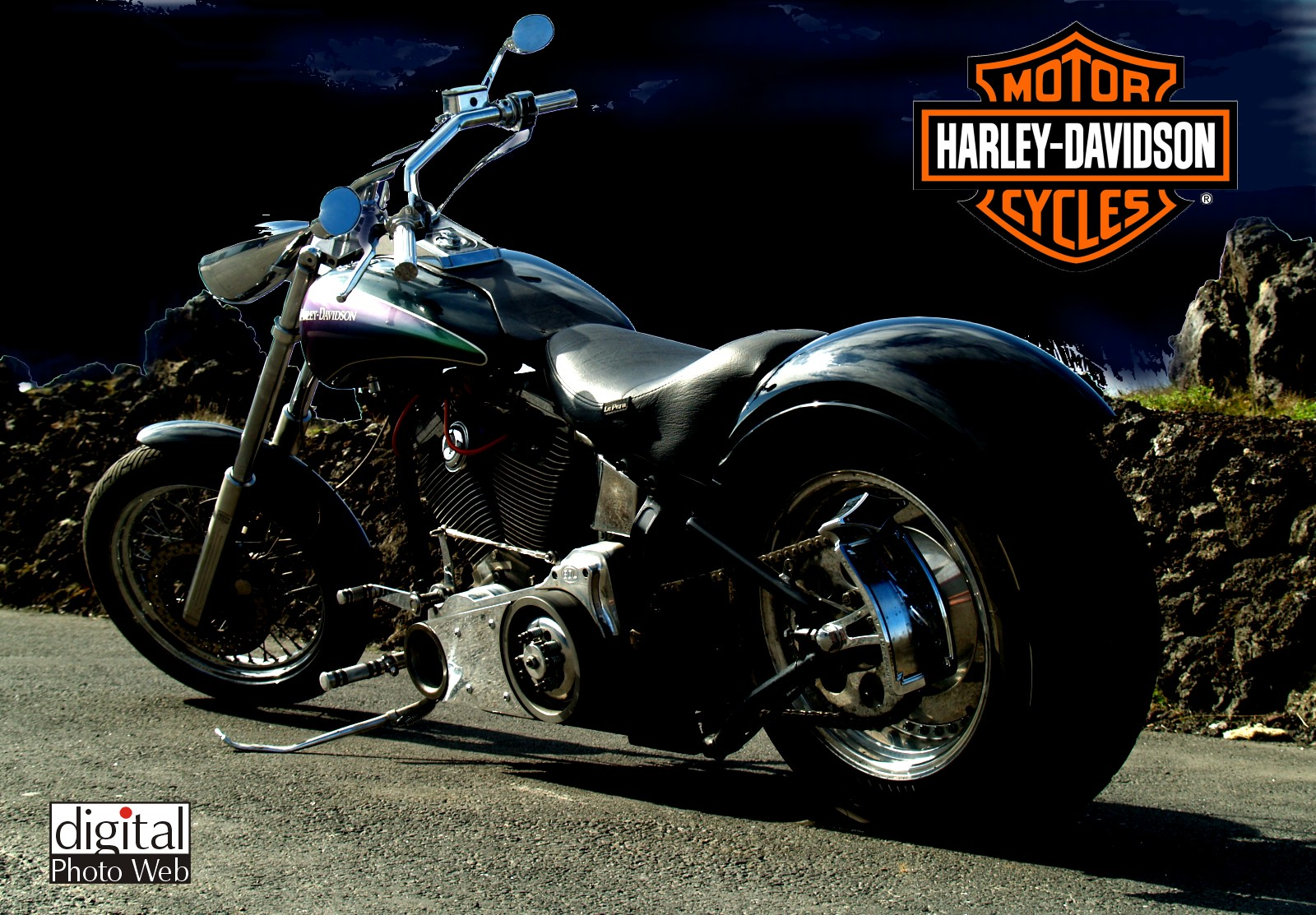 Free Wallpaper Harley Davidson WallpaperSafari