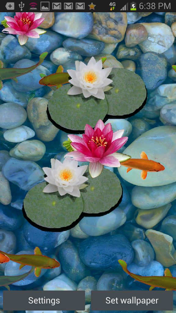 Koi pond live wallpaper wallpapersafari for What kind of fish live in ponds