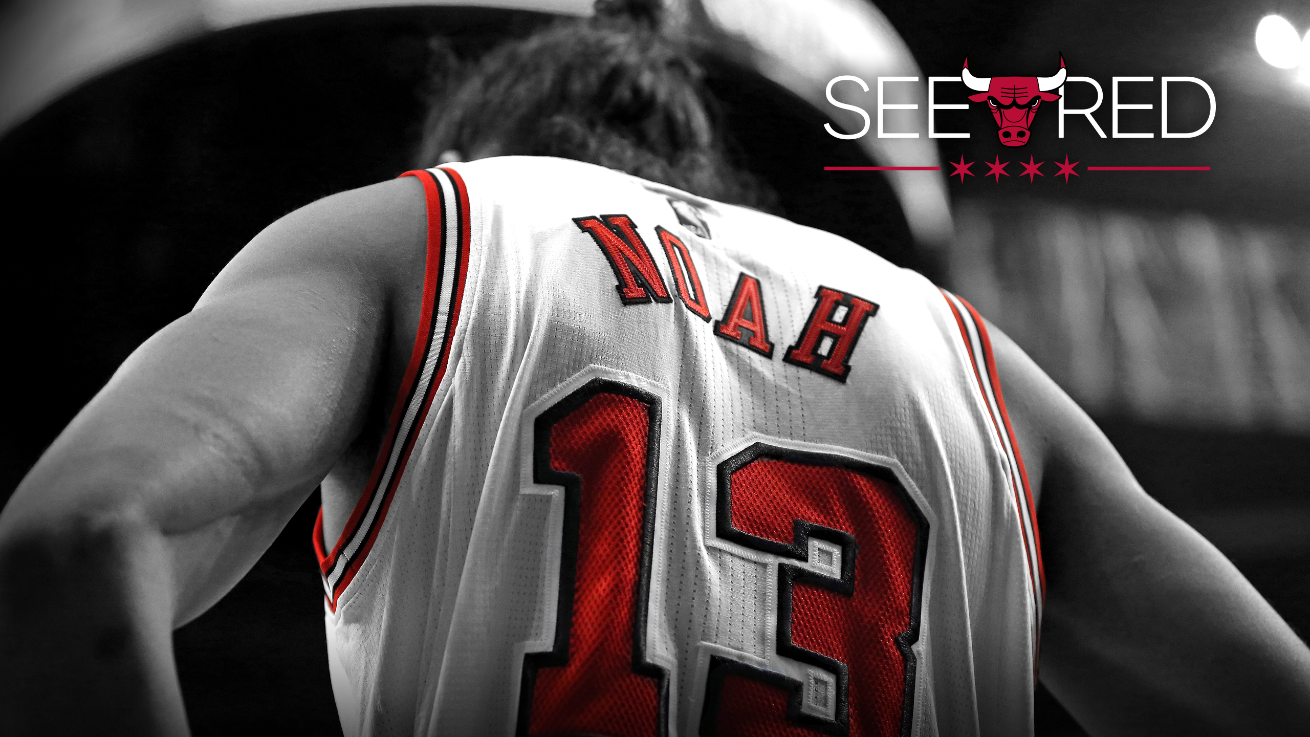 2015 See Red Wallpaper Chicago Bulls 2560x1440