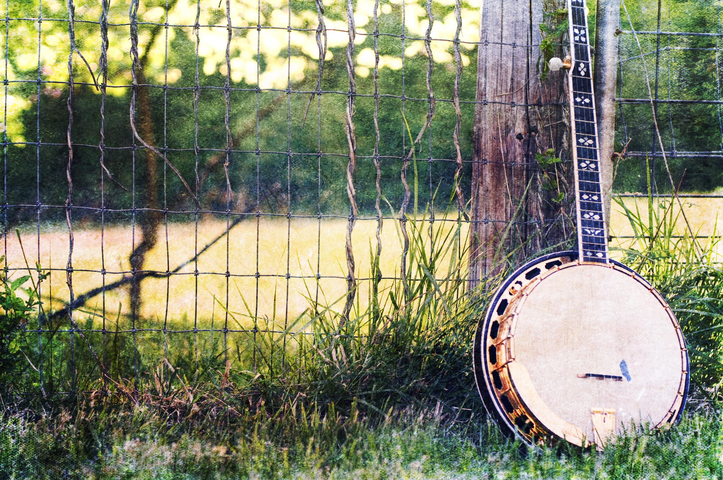 Image result for bluegrass background