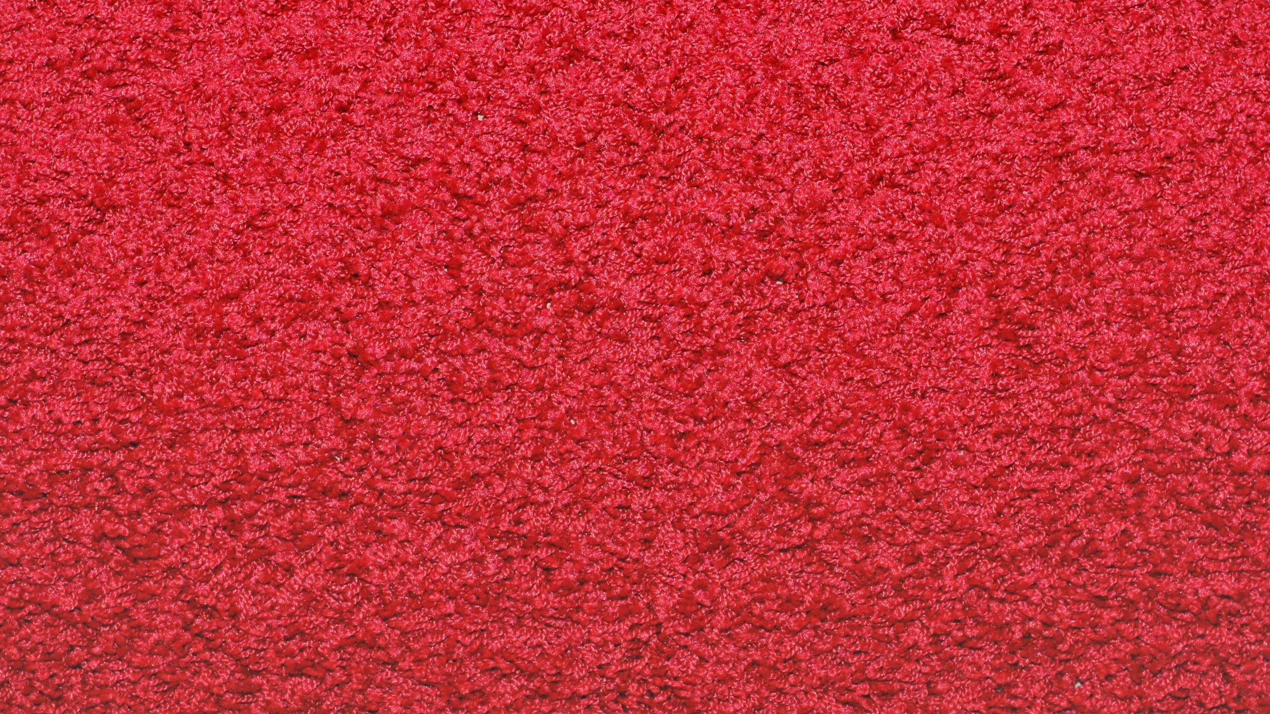 Carpet Red   Carpet Vidalondon 2560x1440