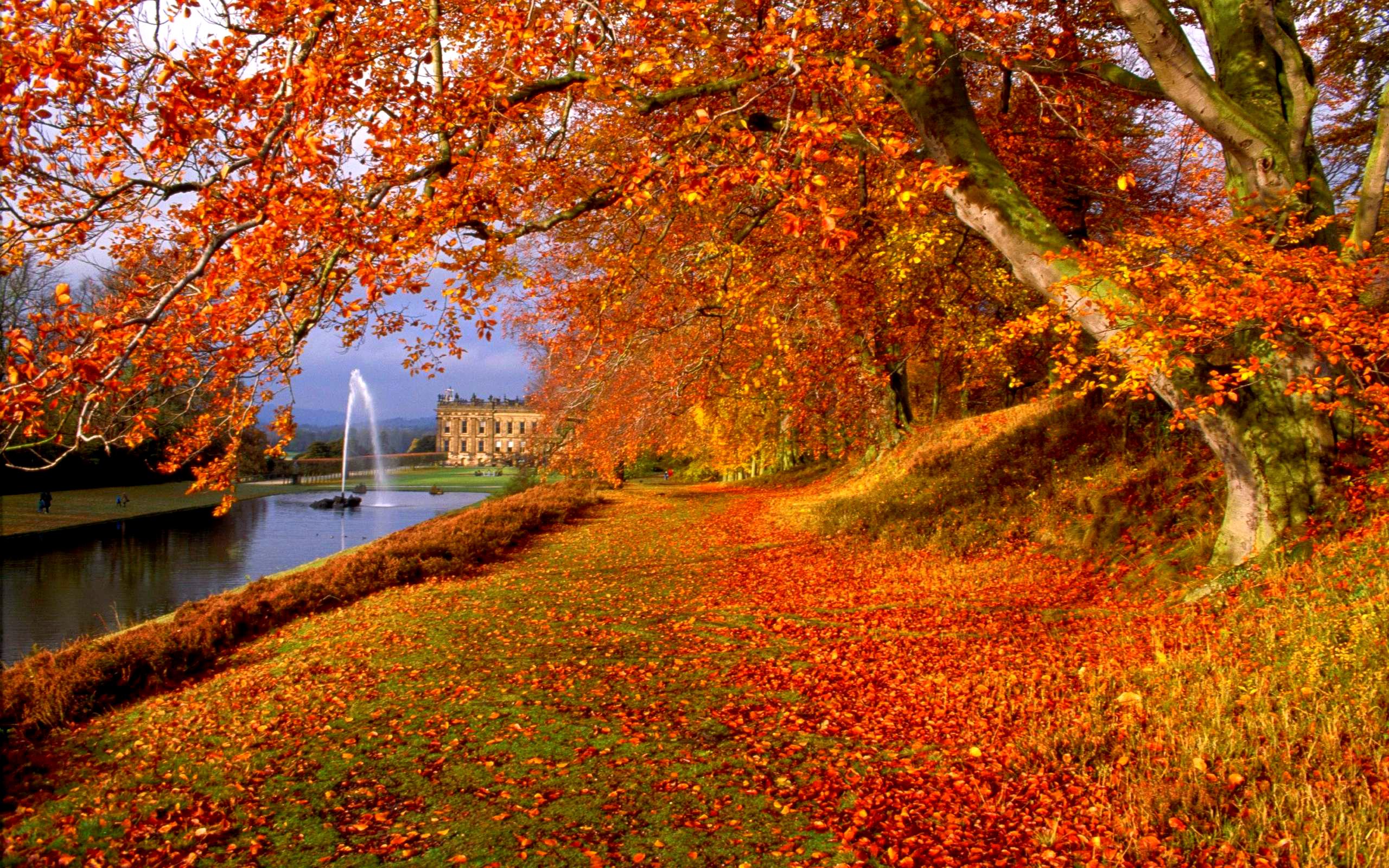 autumn wallpaper background 2560x1600