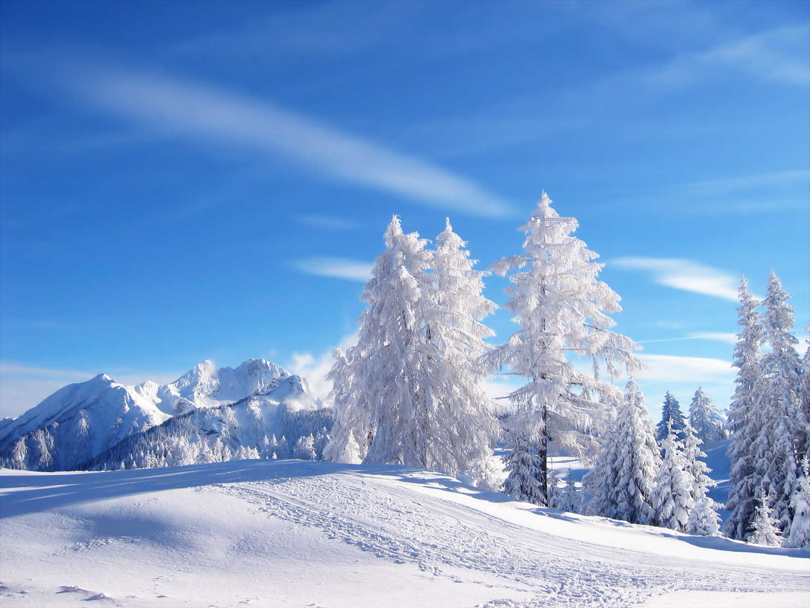 HD Winter Landscape Wallpapers HD Nature Wallpapers 1600x1200