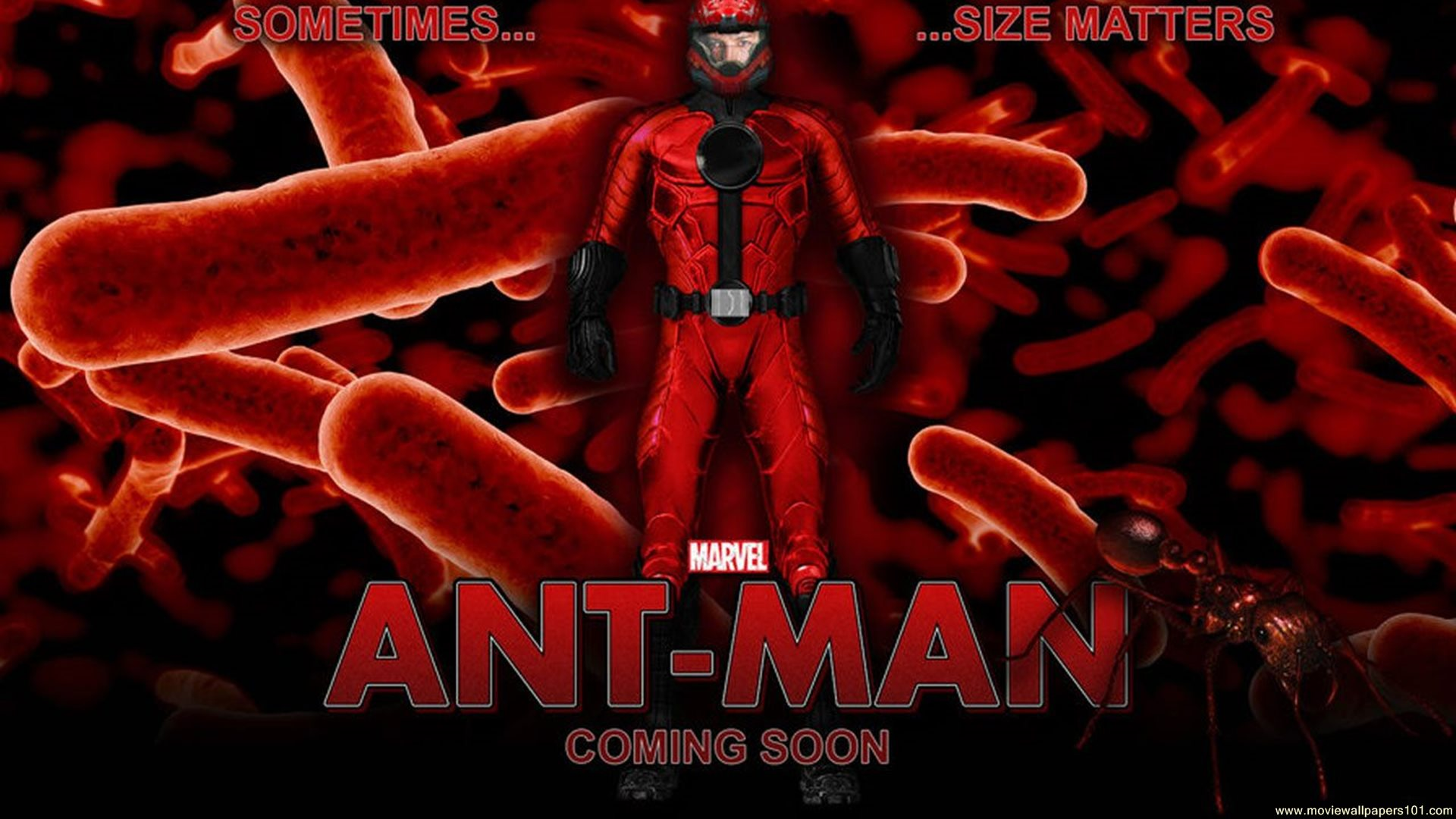 Download Marvel Ant Man 2015 Movie HD Wallpaper Search more high 1920x1080