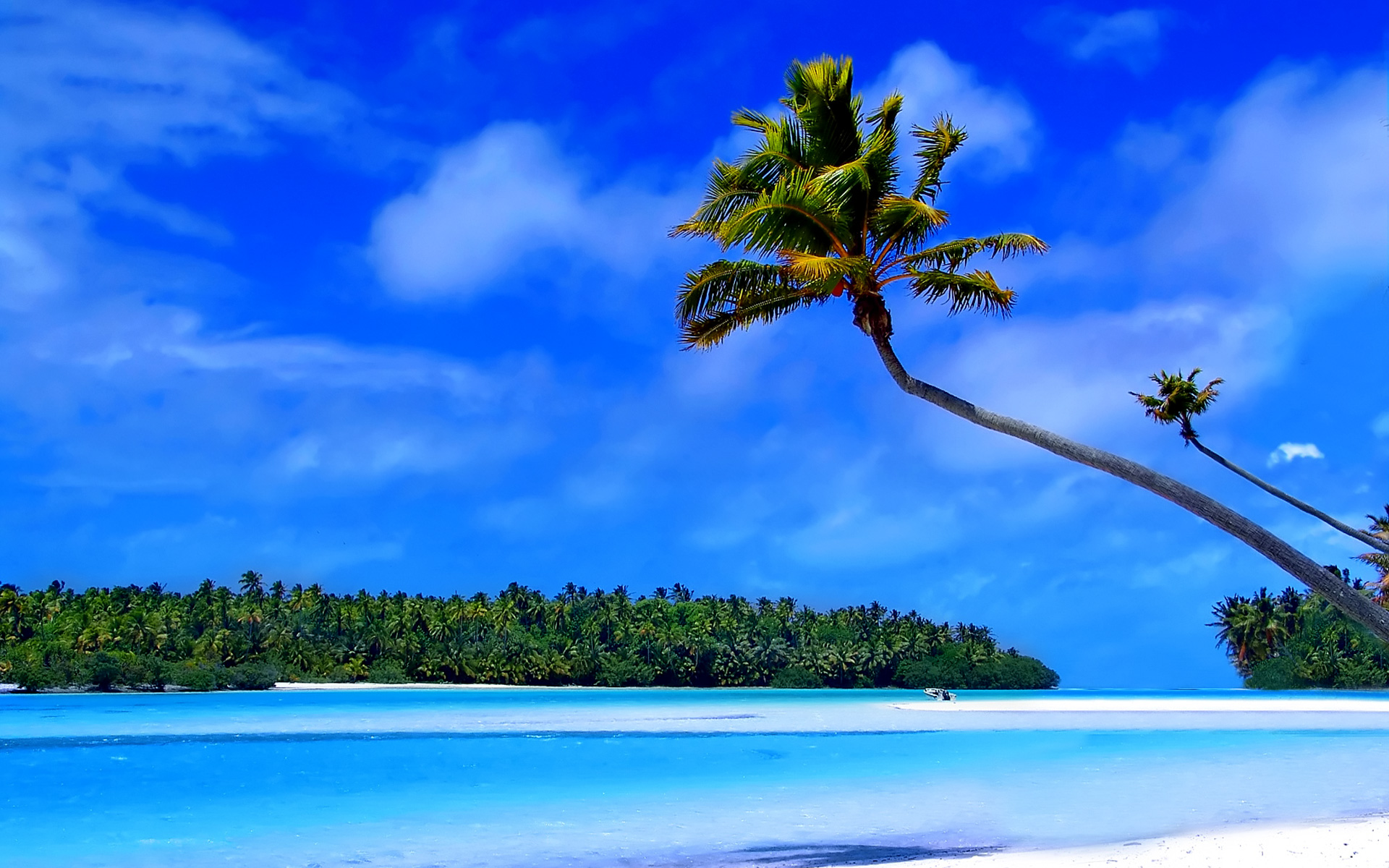 The Caribbean islands wallpaper   Beach Wallpapers 1920x1200
