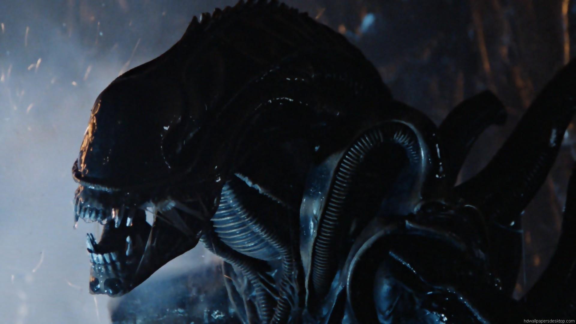 Aliens 1986 Wallpaper HD Movie Wallpaper 1920x1080 1920x1080