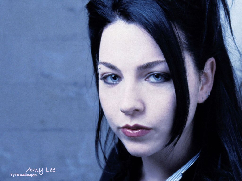 Amy Lee   Evanescence Wallpaper 967807 1024x768